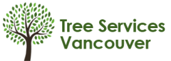 Vancouver Tree Services to Offer More Benefits From Tree Maintenance This Winter Season Through Their Comprehensive Services 1