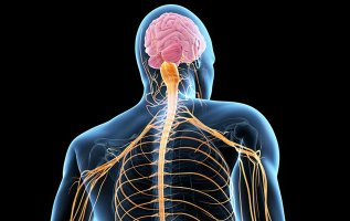 Global ALS(Amyotrophic Lateral Sclerosis) market valuation is expected to surpass USD 841.6 million by 2023, growing at approximately 7.89 % CAGR over the forecast period 2018-2023 2
