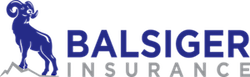 Balsiger Insurance Now Offers Tesla Insurance To 23 States 3