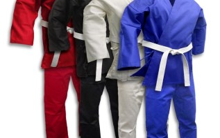 Martial Arts Wear Market Analysis, Growth Opportunities in 2019 and Forecast up to 2025 4