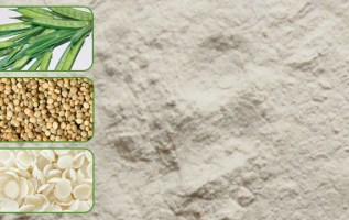 Global Guar Gum Powder Market to Reach 970,984 Tons by 2024 2