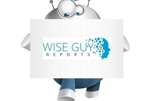 Luxury Autonomous Vehicle Market Future Prospects 2025   Porsche, Tesla, Faraday & Future, BYD 2