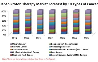 Japan Proton Therapy Market, Patients by 10 Cancer Types (CNS, Head and Neck, Lung, GI, HCC, Pancreas, Gynecologic, Prostate, etc.), Reimbursement Policies & Persons Treated at Centers 3