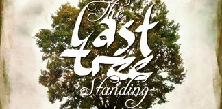 The Fortunate Fools The Last Tree Standing Cover
