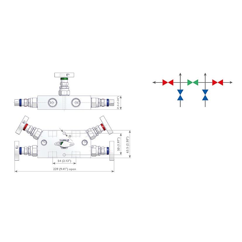 R2 Type Remote Block & Bleed Manifold Pressure Gauges