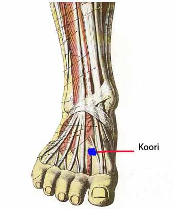 Koori Pressure Point top of foot