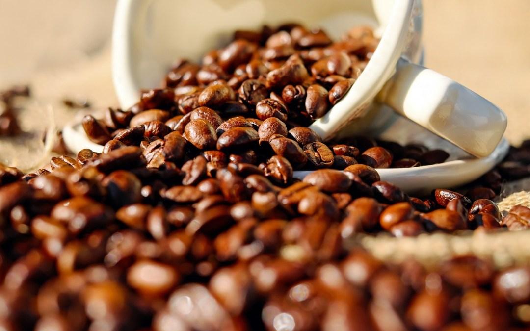 Koffein för effektivare kolhydrattransport