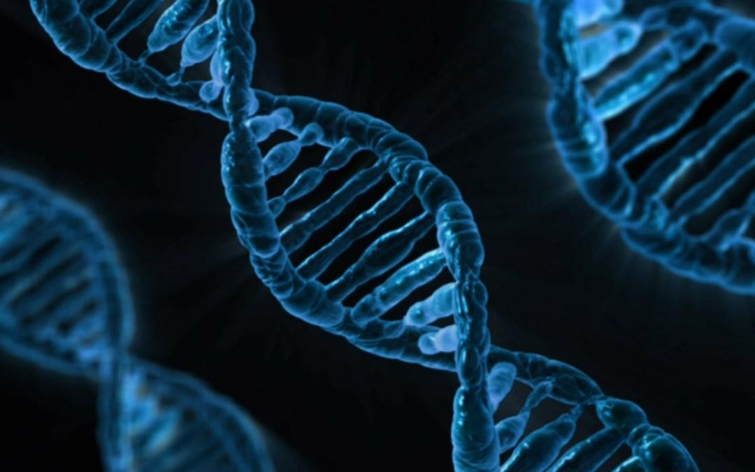 Är du genetisk optimerad för din idrott?