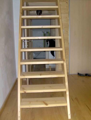 Construire une chelle de meunier - Escalier de meunier ...