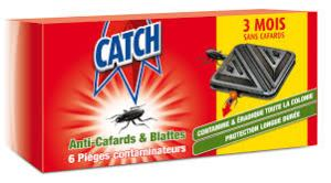 insecticide cafard