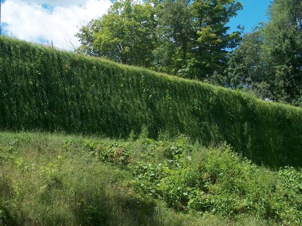 Geoweb Retaining Walls Presto Geosystems