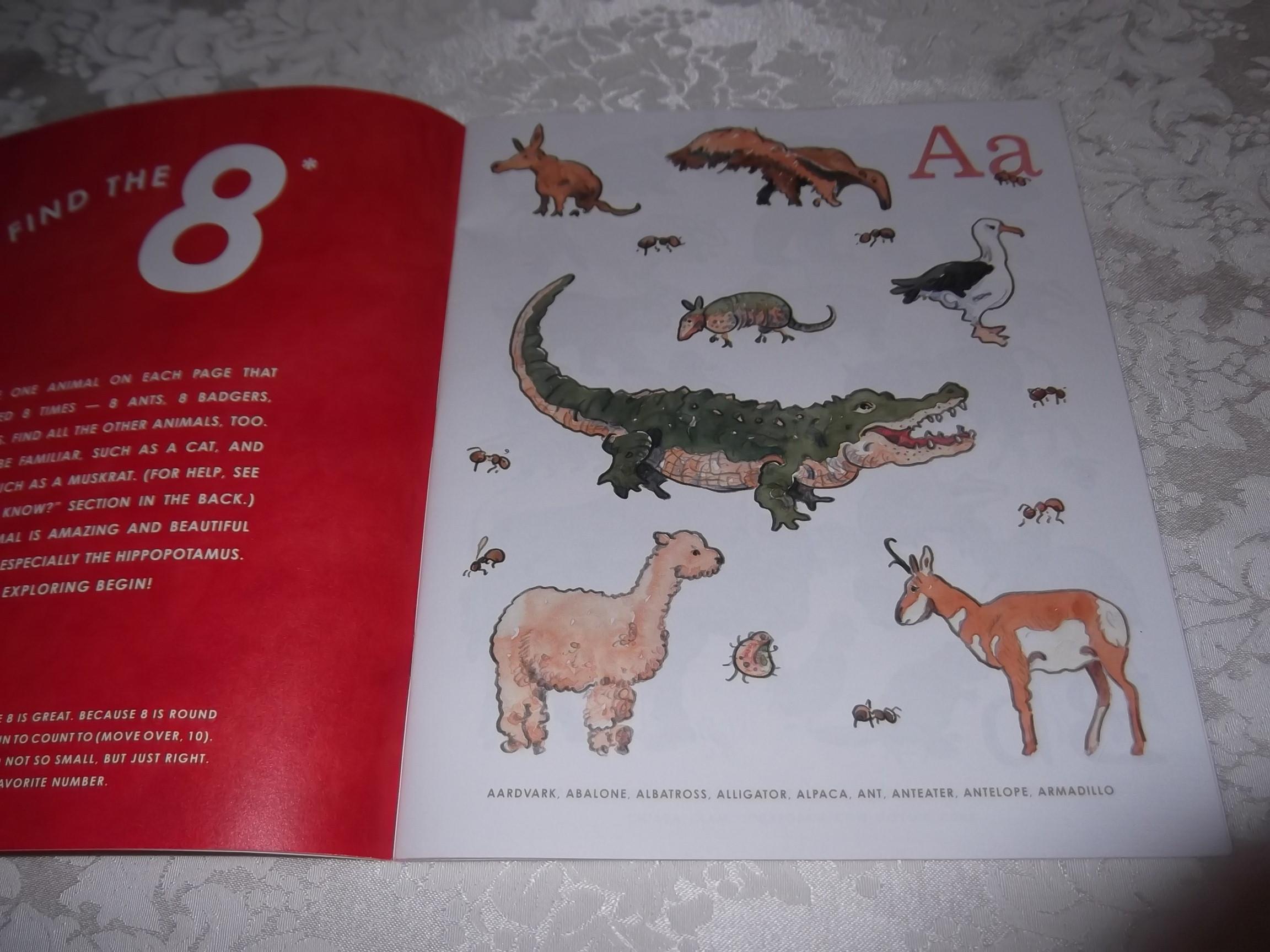 8 An Animal Alphabet Elisha Cooper Brand New Softcover