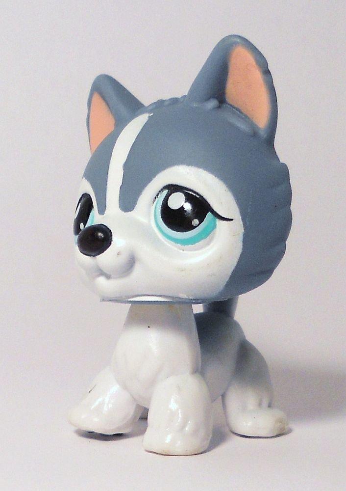 Littlest Pet Shop Gray  White Husky no  loose Puzzle Sp Ed