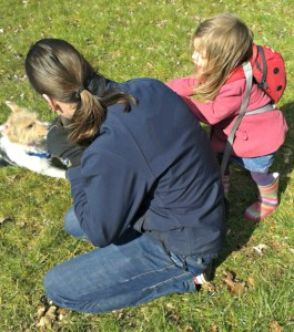 dog, jack russell, jack russell and children, walks, playing, toddler, daddy and daughter