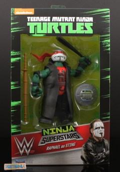 Playmates TMNT WWE Ninja Superstars Review