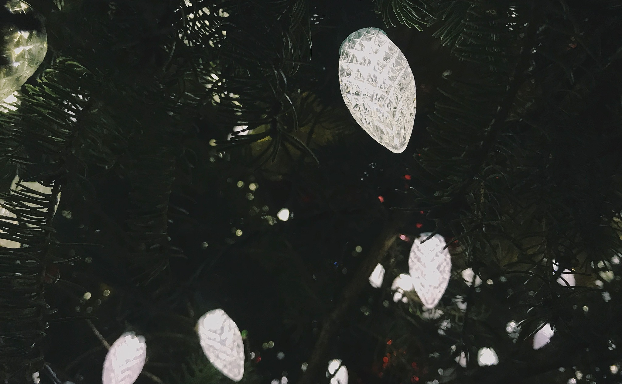 Hello December | prettynaive