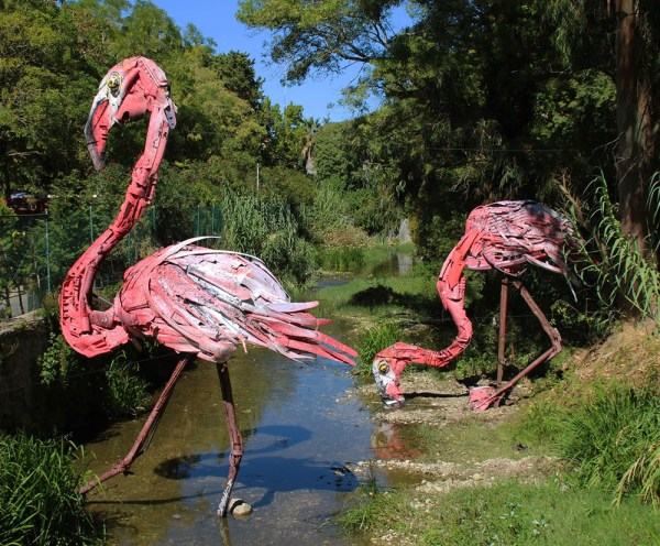 Flamingos, Bordallo II