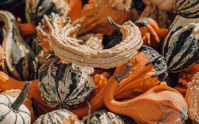 Friday Links: Covid, Anger, Computers. And Decorative Gourds.