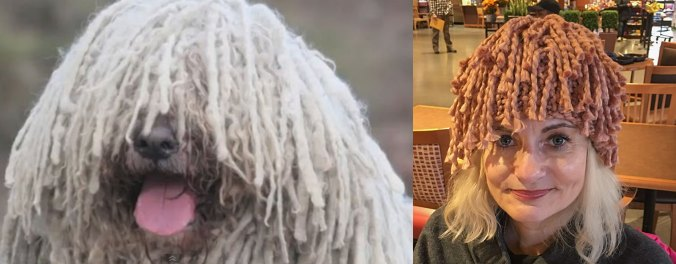 Komondor dog and fringe hat