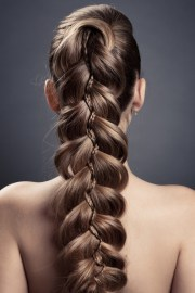 braided hairstyles 2014