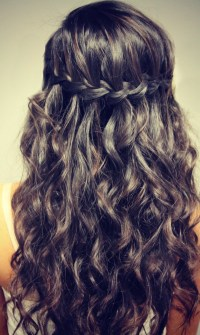 Cute Braid Hairstyles Waterfall Loop ...