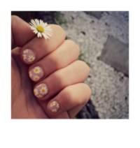 14 Pretty Daisy Nail Designs