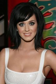 amazing katy perry hairstyles