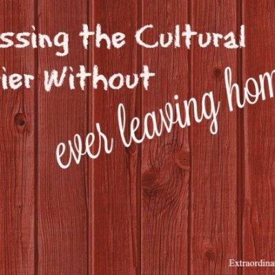 Kids and Culture: Crossing the Cultural Barrier Without Ever Leaving Home