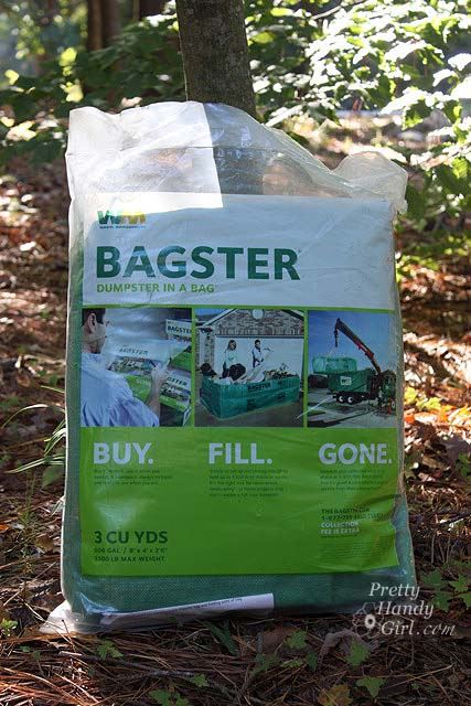 the_bagster_against_tree