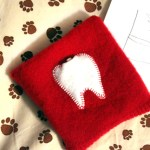 The 10 Minute Tooth Fairy Pouch