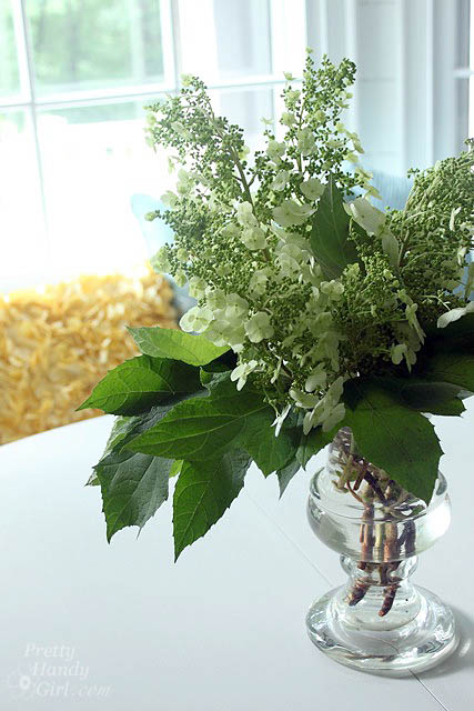 oak_leaf_hydrangeas