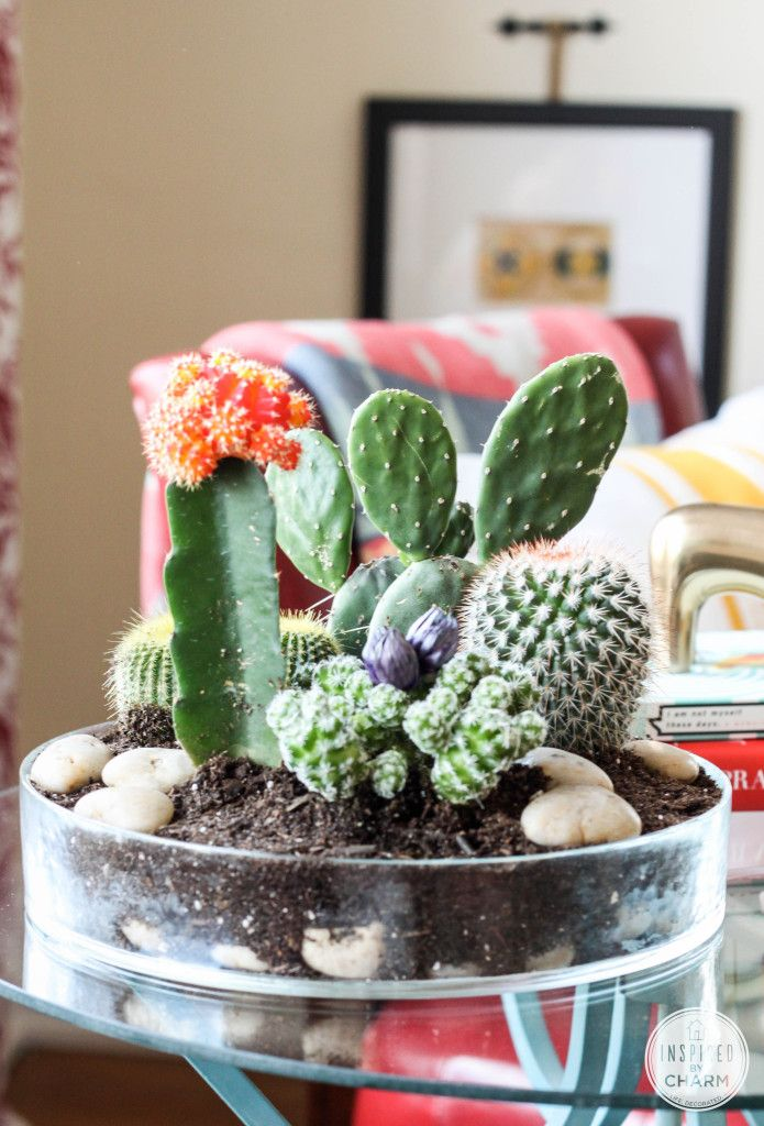 25 Ideas For Tabletop Gardens And Terrariums Pretty Handy Girl