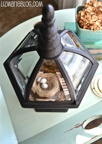 Old Light Fixture Terrarium
