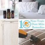 10 Non-toxic Dust Mite Remedies | Pretty Handy Girl