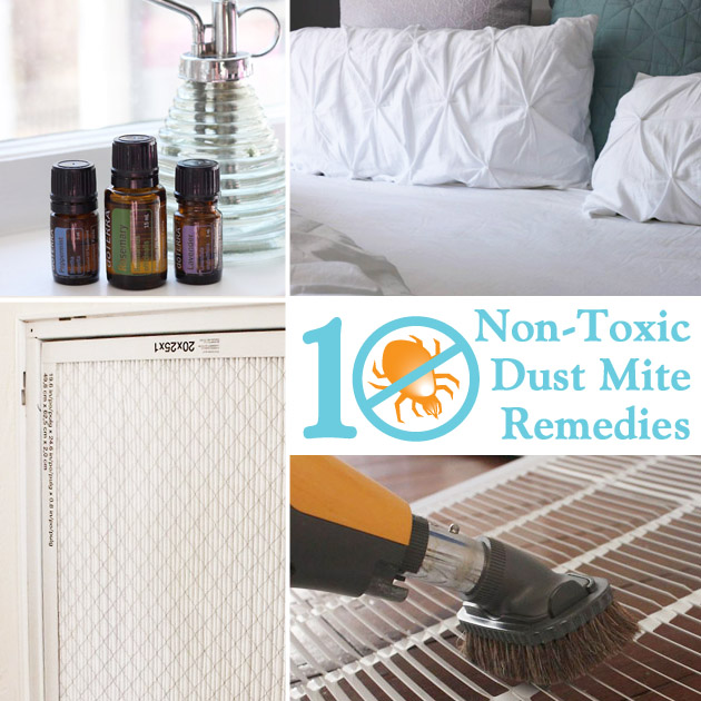 10 Non-Toxic Dust Mite Remedies for Your Home - Pretty Handy