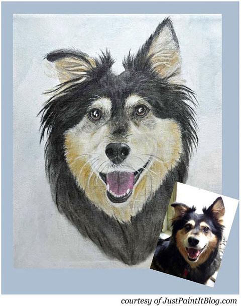 Buddy Handy Dog   English Shepherd Portrait