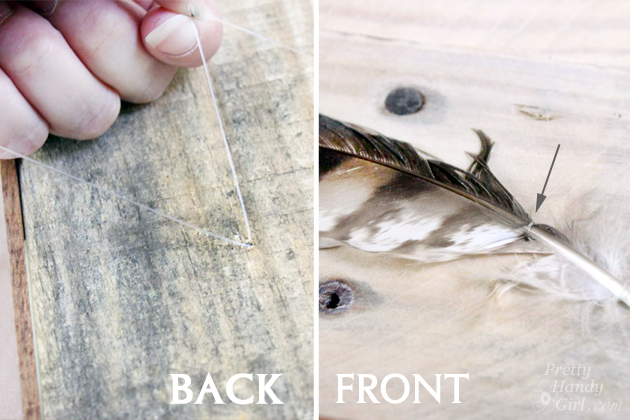 DIY Feather Art | Pretty Handy Girl