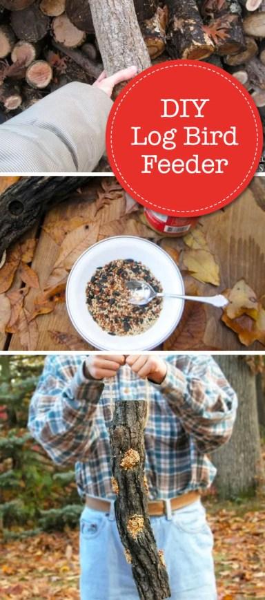 DIY Log Bird Feeder Pin Image