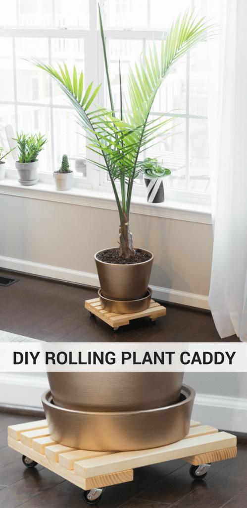 DIY Rolling Plant Caddy Tutorial