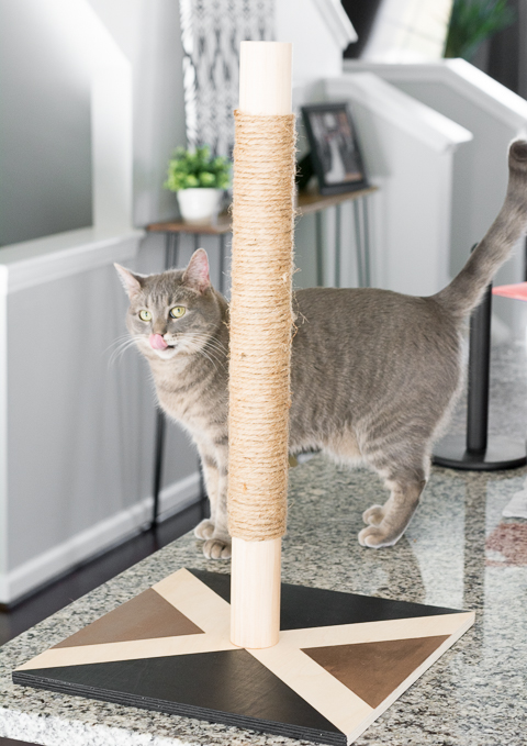 Modern Cat Scratcher DIY