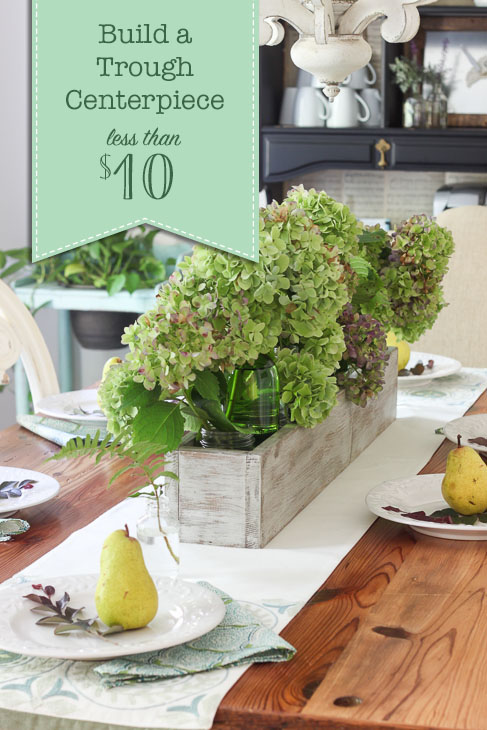 How to Build a Trough Centerpiece for less than $10!!!