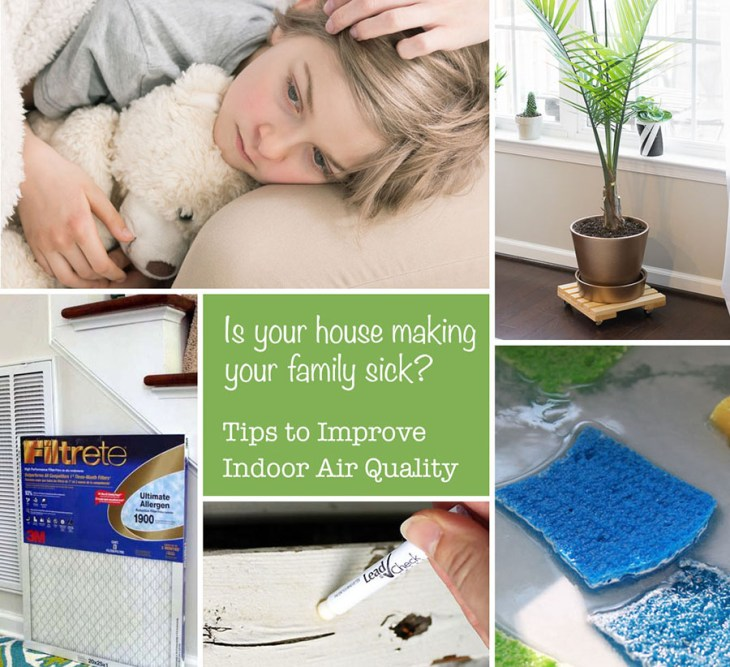 Is Your House Making You Sick? Top Tips to Improve Air Quality