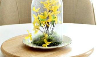 Spring Cloche Idea