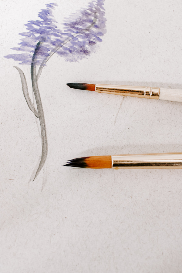 Use a small and medium size brush to create your watercolor lavender