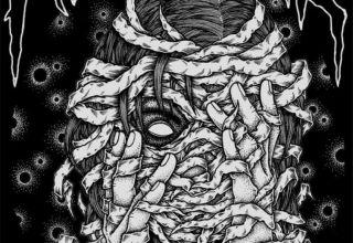 Kasuar – Tod und Harmonie