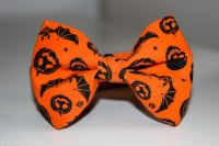 Halloween Bow Tie - Pretty Pointer