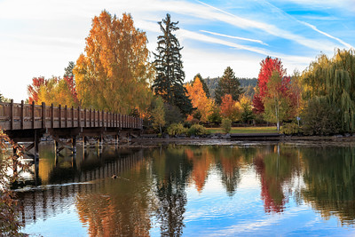 smugmug-mirrorpond-fall-bridge-S