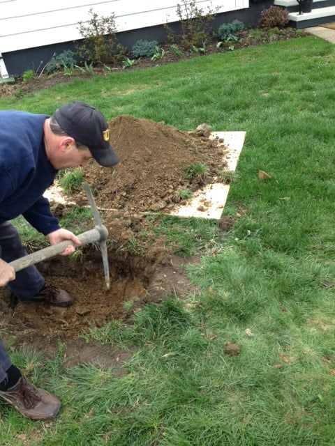 Tony using a pick axe to plant the Autumn Brilliance Serviceberry
