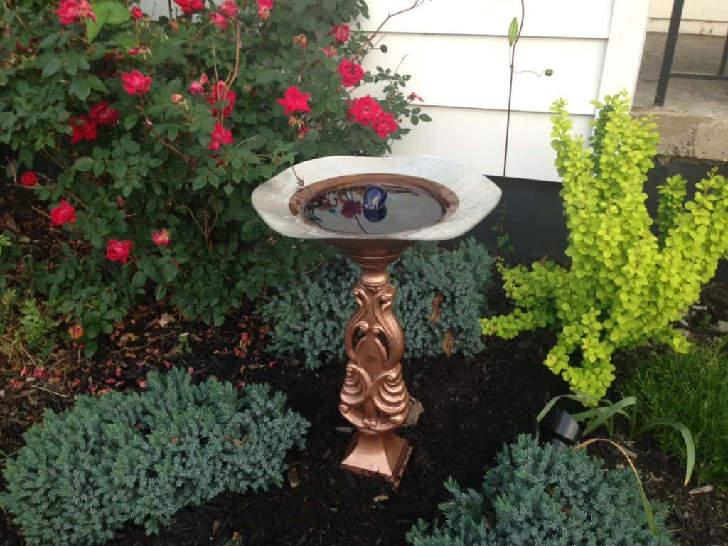 solar birdbath fountain in landscape