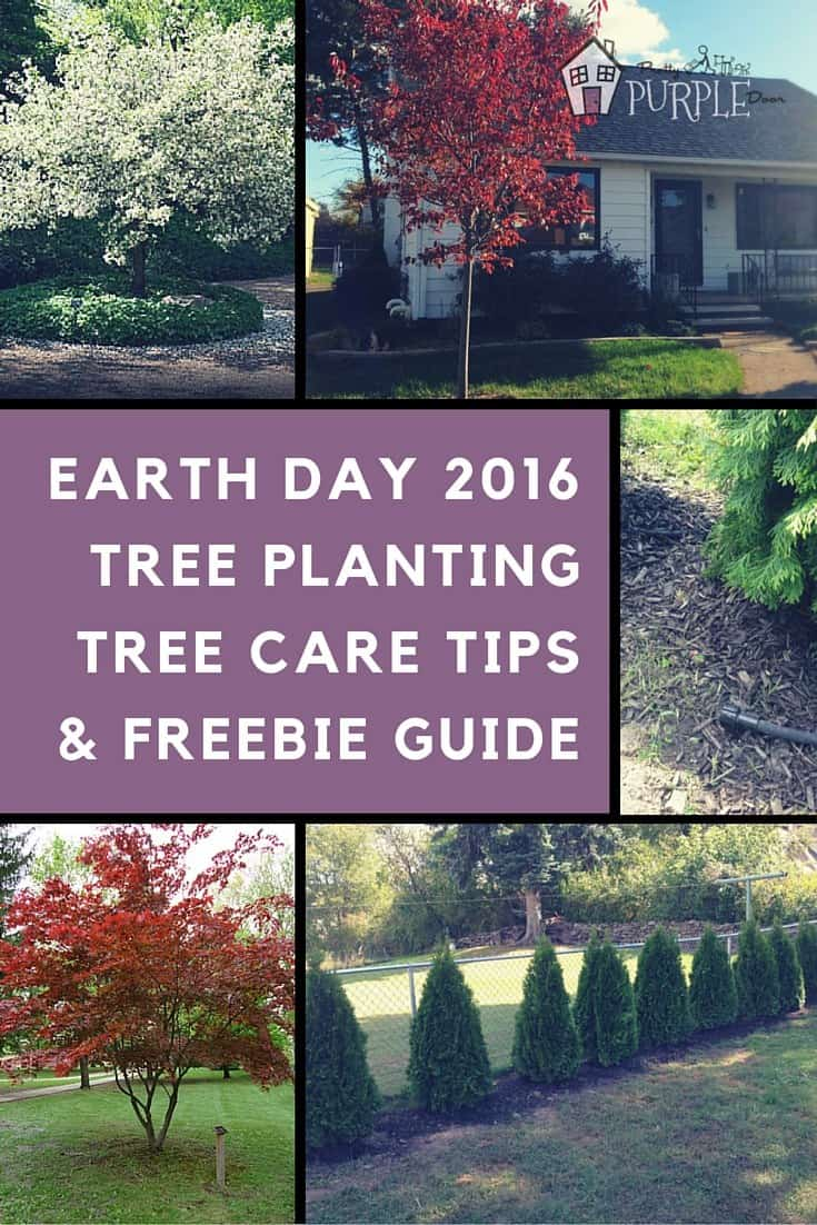 Earth Day 2016 Pinterest Image
